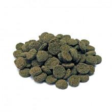 Algae Wafers Mini - 50g Prodac - 2