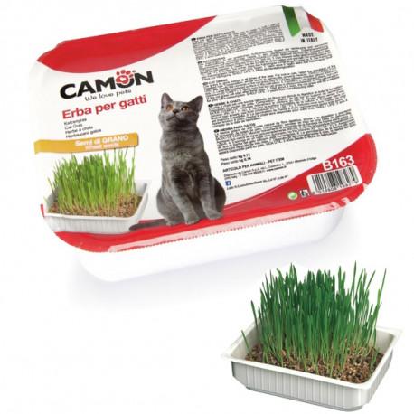 Camon tráva pre mačky zo pšenice 130g Camon - 1